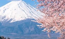 יפן - הר פוג'י