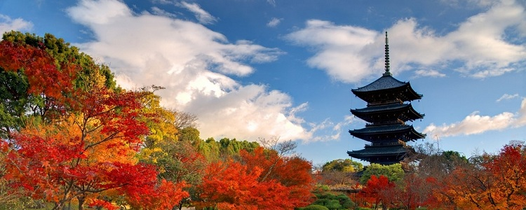 Japan_Articles4