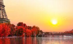 שלכת בנהר הסיין