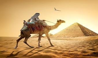 טיול מאורגן למצרים, פירמידות ושייט על הנילוס